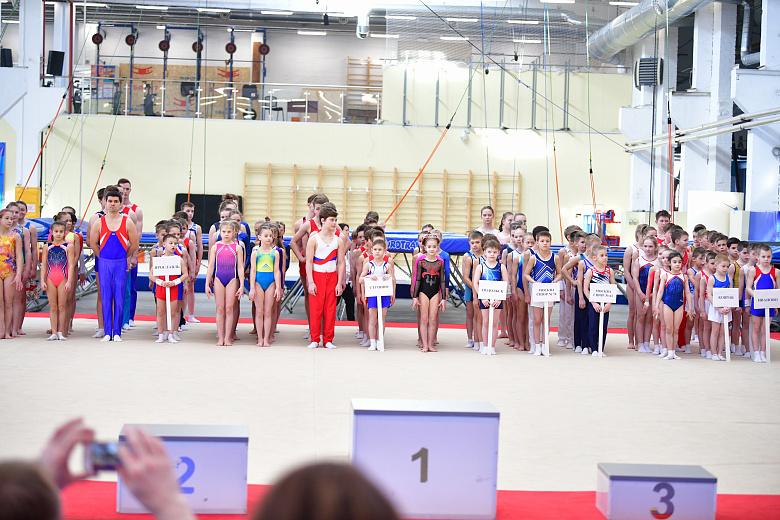 В Ярославле открылись соревнования по спортивной гимнастике